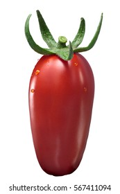 Fresh plum paste San Marzano tomato (Solanum lycopersicum), with sepal, upright. Clipping path, shadowless