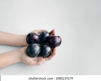 Fresh plums photo Girl is holding a handful of ripe plums in her hands Photo with copy space processed by VSCO filter Minimalist style