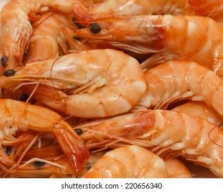 Fresh Prawns Seafood