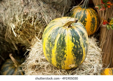 Fresh pumpkins and hey. Autumn harvest