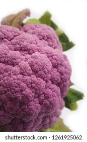 Fresh purple cauliflower with leaf isolated on white background with selective focus. Caulis floris