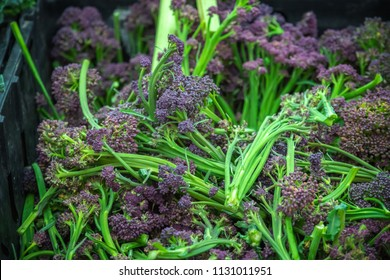 Fresh purple sprouting broccoli on display at Broadway Market, a street market in Hackney, East London