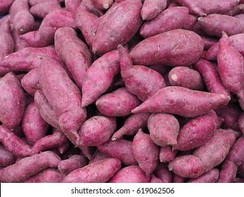 Fresh purple yams pile.