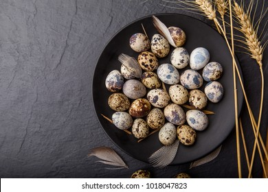 Fresh quail eggs. Rustic style on dark wood background