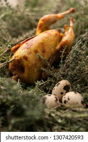 Fresh quail meat, quail eggs. Delicious fried quail with herbs. Quail eggs with sprigs of rosemary, shallow DOF, selective focus. Photo taken on the workshop.