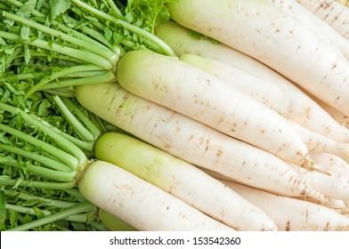 fresh radishes in market