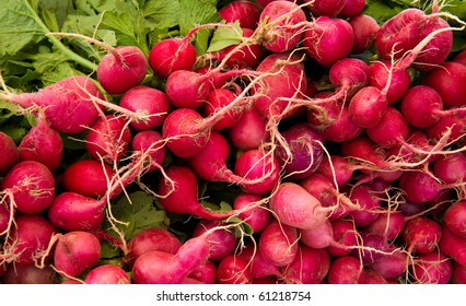 Fresh radishes for sale at a local farmer's market.