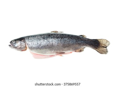 Fresh rainbow trout ready for cooking isolated on white background