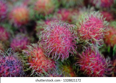 Fresh rambutans tropical market closeup photo