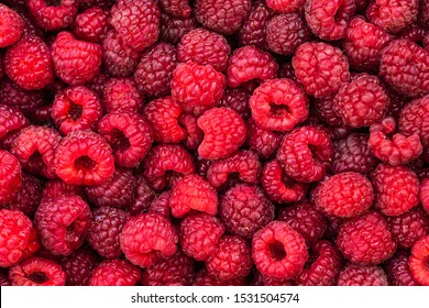 Fresh raspberries background closeup.  Backdrop for your design .  The concept of a healthy diet.