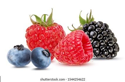 Red Berries Images Stock Photos Vectors Shutterstock