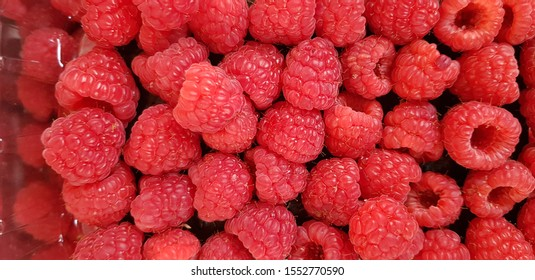 Fresh Raspberries so Bright and Red