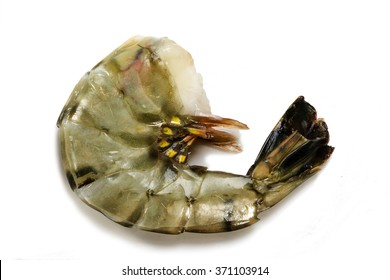 fresh raw black tiger prawn without head ready to grill or cook,close up shot  isolated with shadows on a white background