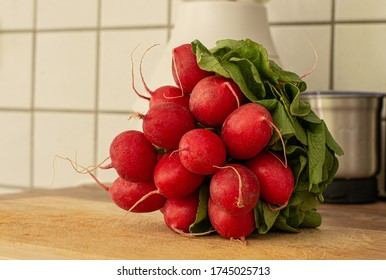 Fresh raw bunch of Red Radish in a kitchen
