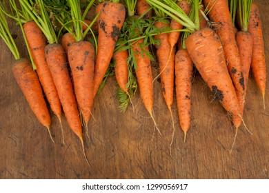 Fresh raw carrot on wooden table. Farm organic crop