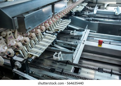 Fresh and raw chicken eggs on a conveyor belt, being moved to the packing house.