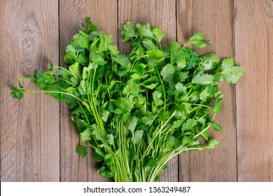 Fresh raw cilantro bunch in metal bucket on wooden background. Organic cilantro closeup in rustic style, vegetarian food.  Flat lay Parsley indispensable source of vitamins A, C, K, B1, B2, PP, E, C