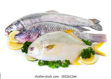 Fresh raw fish display with lemon and lime on a white background
