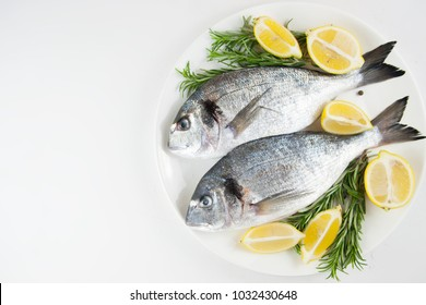 Fresh raw fish, dorado on a plate with herbs and slices of lemon.