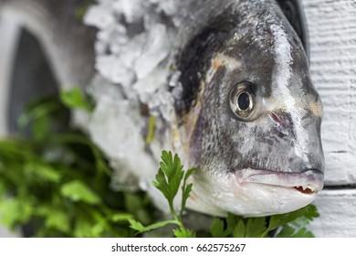 Fresh raw fish on wooden board.