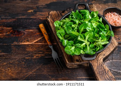 Fresh Raw green lambs lettuce Corn salad leaves in a pan. Dark wooden background. Top view. Copy space