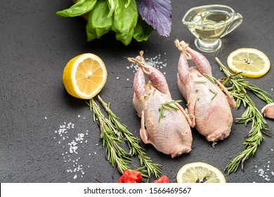 Fresh raw meat quails with herbs and greens rosemary, basil ready for cooking on close-up. Uncooked quail. Cooking poultry meat.