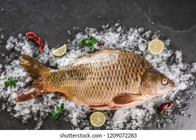Fresh raw mirror carp fish with spices, lemon on ice over dark stone background. Creative layout made of fish, Seafood, top view, flat lay