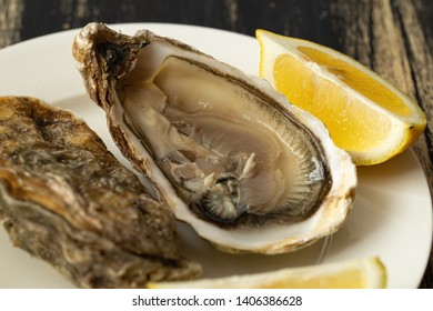 Fresh raw oyster shucked and lemon