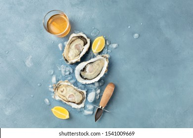 Fresh raw oysters, overhead shot on ice with a glass of white wine, lemon slices, shucking knife and a place for text