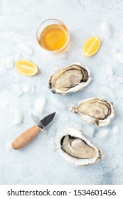 Fresh raw oysters, shot from above on ice with a glass of white wine, lemon slices, and shucking knife