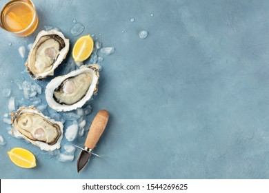 Fresh raw oysters, shotfrom the top with a glass of white wine, lemon slices, a shucking knife and copy space