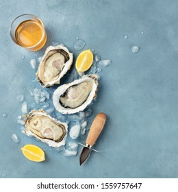 Fresh raw oysters, square overhead shot on ice with a glass of white wine, lemon slices, and a shucking knife, with a place for text