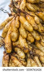 Fresh raw potatoes, background texture, potato root, raw vegetable, selective focus