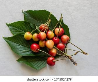 Fresh Raw red Cherries top view