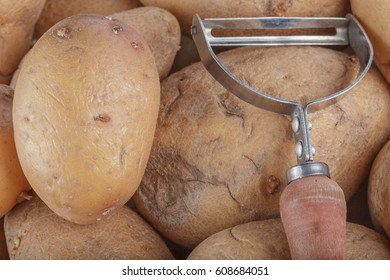 Fresh raw rustic farm potatoes in wooden basket next to a handmade potatoe cleaner on a clean wooden background