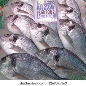 Fresh raw seafood fish on ice