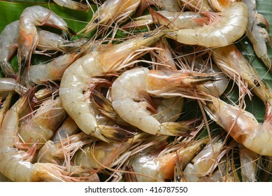 Fresh raw shrimp / prawn in Kerala India. Seafood in coastal area south Indian and  Sri Lanka, Malaysia, Thailand, Singapore.