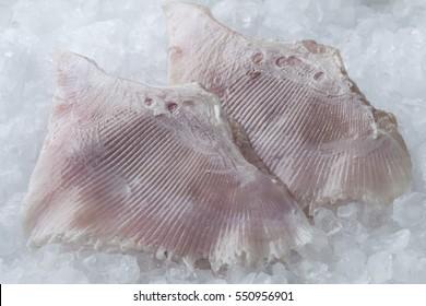 Fresh raw skate fish wings on ice