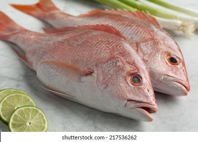 Fresh raw whole red snappers close up ready to cook