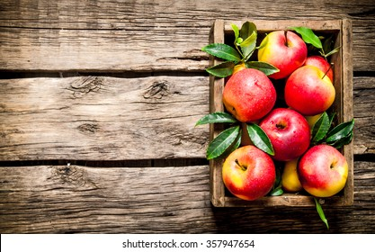 Fresh red apples in the wooden box.  On wooden background. Free space for text . Top view