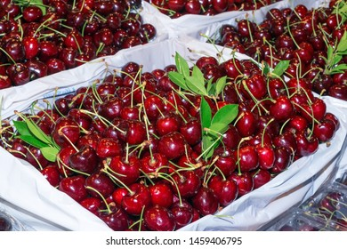 Fresh red cherry in plastic box for sale.