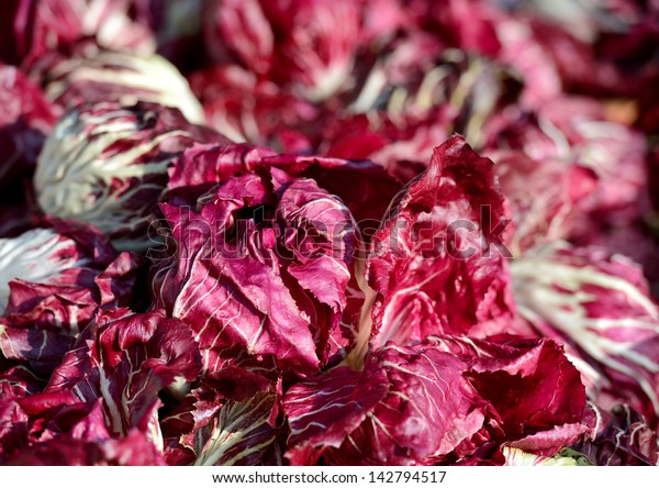 Fresh red chicory. Selective focus