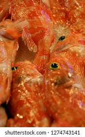 Fresh red fish in the market of Chania, Crete, Greece
