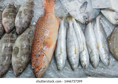 Fresh red grouper on ice in the fish market. Red-banded grouper. Seafood. Tasting seafood from Thailand. Red fish on the counter night market. Lying on the ice table.