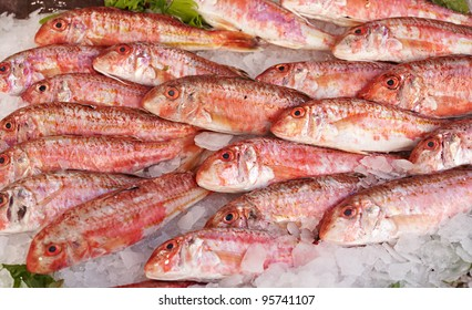 Fresh red mullet for sale on fish market of Marseille, Mediterranean France