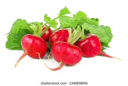 Fresh red radish isolated on white background