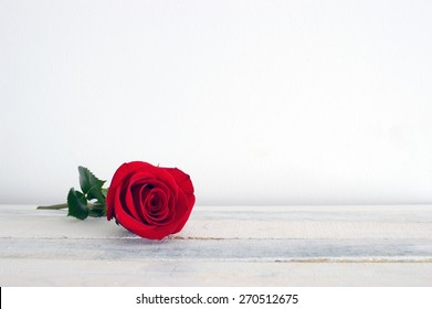 Fresh red rose flower on the white wooden shelf. White background.