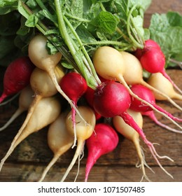 Fresh red and yellow radishes on dark rustic wooden background. Top view