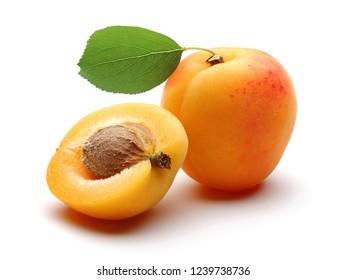 Fresh ripe apricots with leaf isolated on white background. Studio shot.