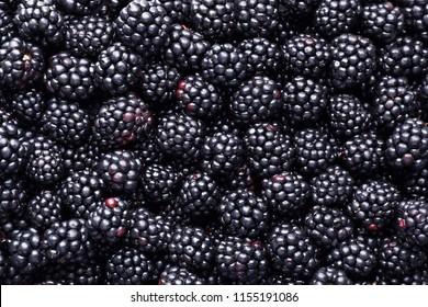 Fresh ripe blackberries as background, top view